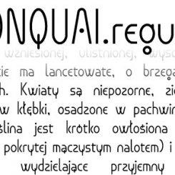 MONQUAI